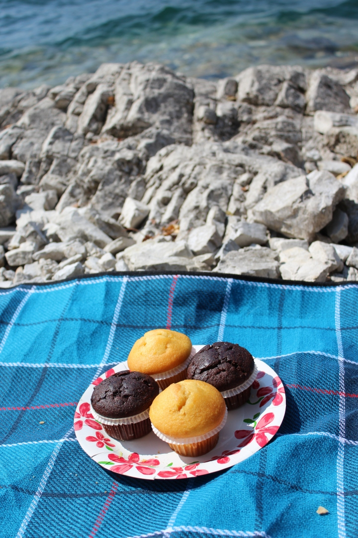 summer picnic_10