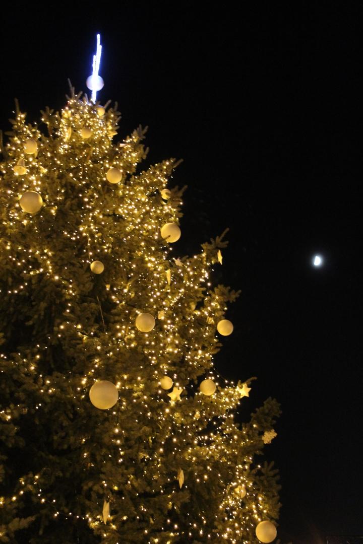 bratislava-by-night-15